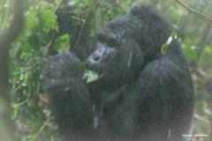 Uganda_B_075